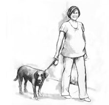Drawing of a pregnant woman walking her medium-sized dog.
